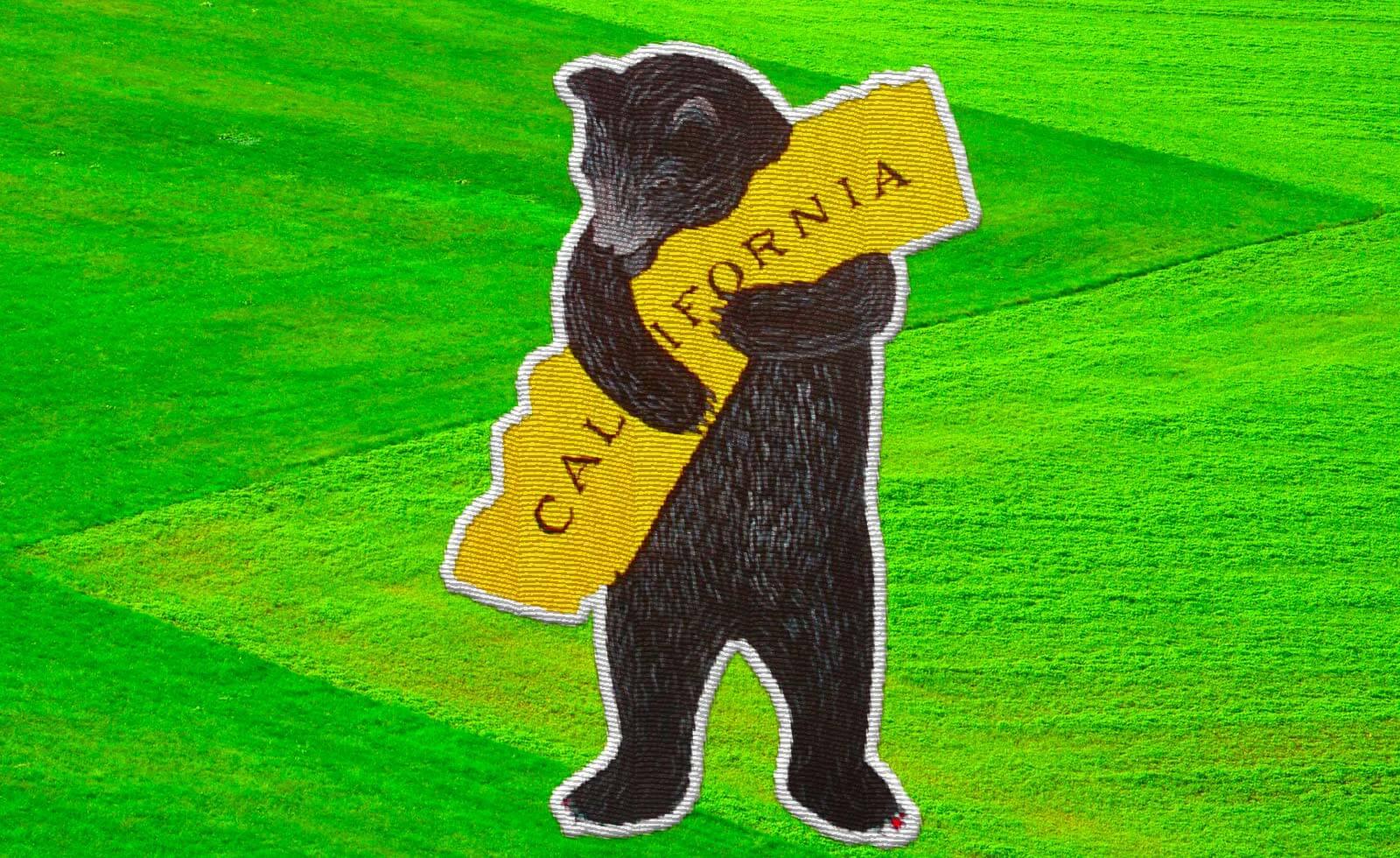気になるカリフォルニア、ヴィンテージ2020の行方