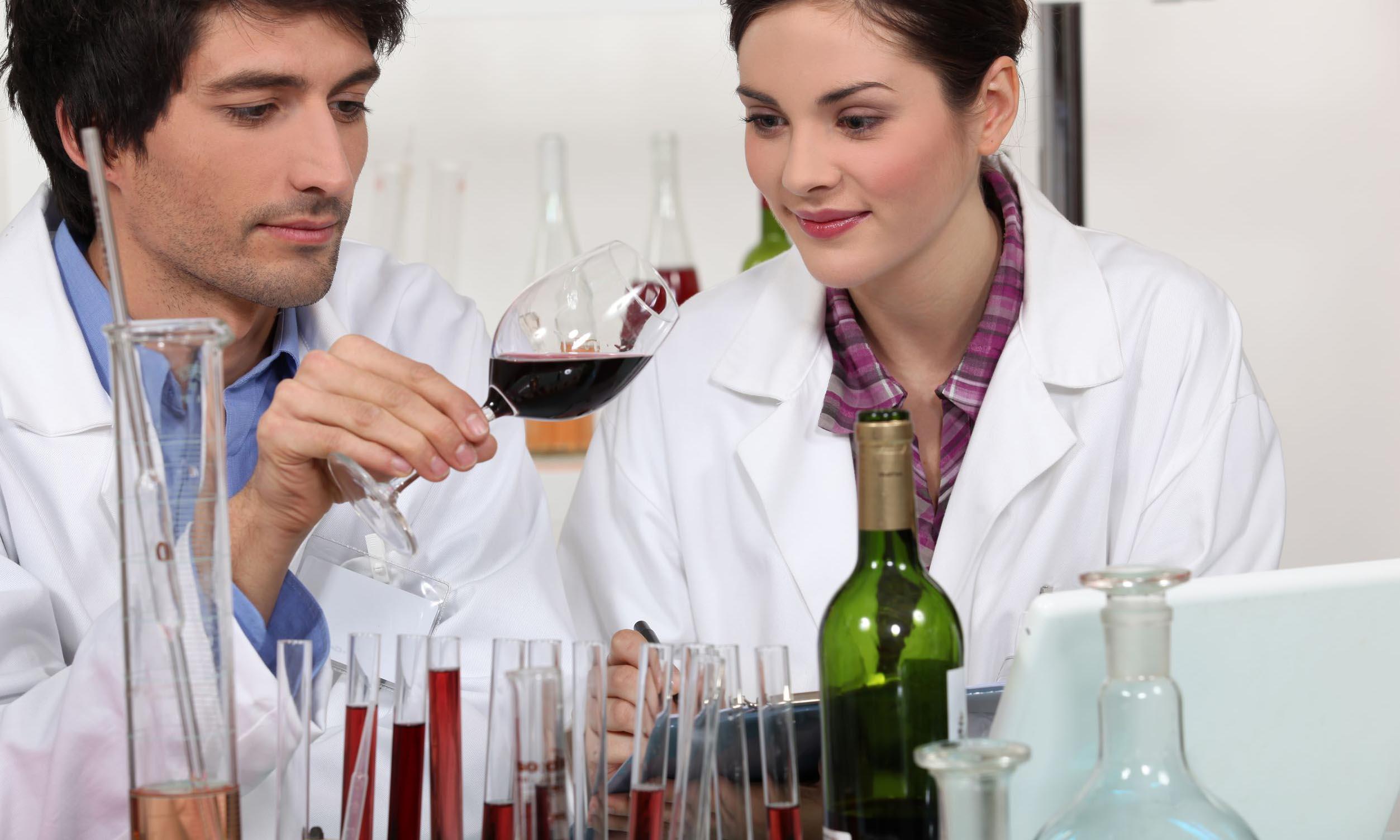 美味しいワインの決め手のひとつ、緻密なデータ解析